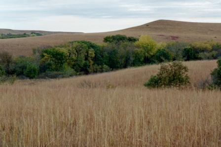 konza prairie geary county cvb official website